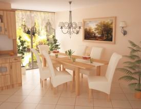 D/SSZ15. szék asztal